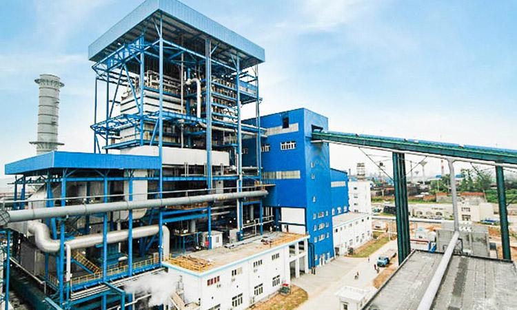 weil mclain boiler tech support – CFBC Boiler Manufacturer
